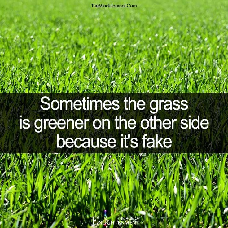 Sometimes the grass is greener on the other side - https://themindsjournal.com/sometimes-grass-greener-side/