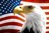 patriotic background : Double exposure: Bald Eagle in the foreground with the American flag blurred in the background. Stock Photo