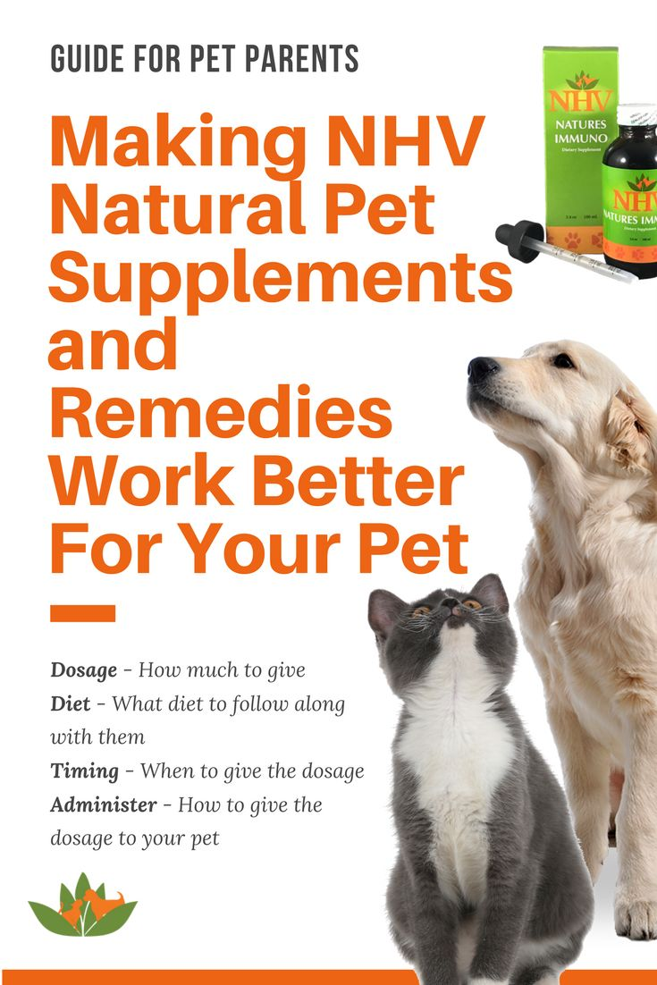 Cancer herbs for dogs - How To Make Our Natural Pet Supplements Work Better