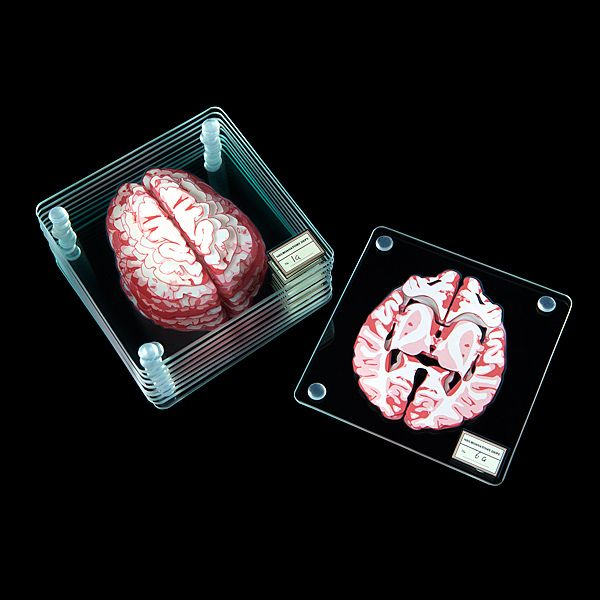 Brain Sections glass drink coasters