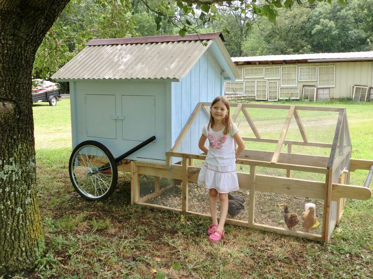 15 best images about chicken coop on pinterest for Big chicken tractor