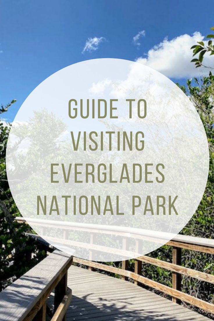 Best Things To Do In The Everglades Indiana Jo Usa Vacation Destinations Everglades National Park Florida Everglades National Park
