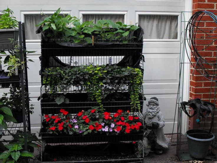17 Best 1000 images about Vertical Vegetable Gardening DIY on Pinterest