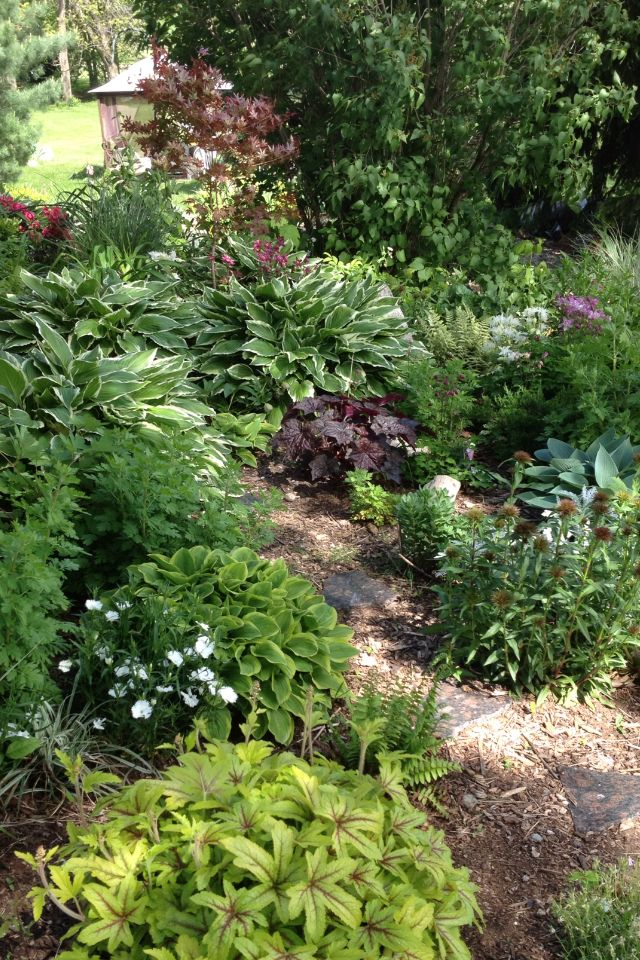 Garden Ideas 2013 54 best my shade garden images on pinterest | shade garden