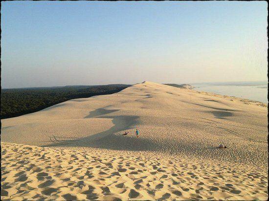 Dune du Pilat, La Teste-de-Buch: 3.208 Bewertungen und 2.132 Fotos von Reisenden. Dune du Pilat ist auf Platz 1 von 21 La Teste-de-Buch Aktvititäten bei TripAdvisor.