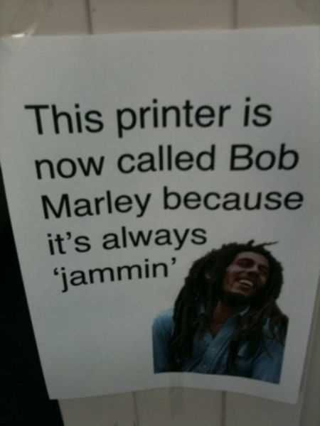 36 Great Funny Pictures
