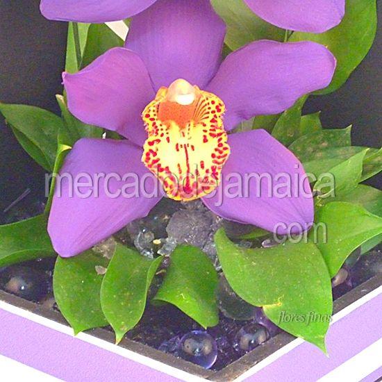 Arreglo con Orquídeas Moradas Cymbidium Purple !  Envia Flores