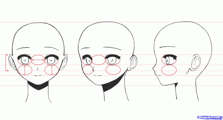 Manga Drawings Step by Step | how to draw anime girl faces step 2