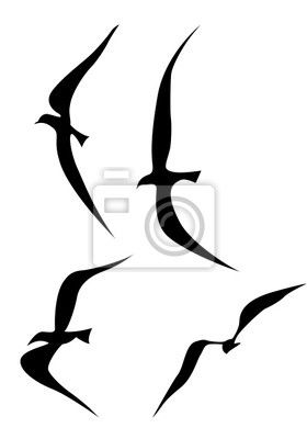 tatouage d 39 oiseau qui s 39 envole recherche google tattoo pinterest search. Black Bedroom Furniture Sets. Home Design Ideas