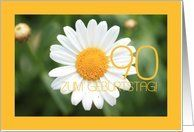 90th Birthday card in German, white daisy Card by Greeting Card Universe. $3.00. 5 x 7 inch premium quality folded paper greeting card. Greeting Card Universe offers the largest selection of Non-English / Other Languages cards on the web. Do something special this year with a paper card. Turn to Greeting Card Universe for all your Non-English / Other Languages card needs. This paper card includes the following themes: photo, photography, and studio porto sabbia. Greeting C...
