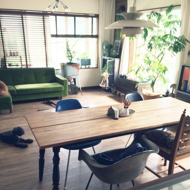 Megumiさんの、部屋全体,IKEA,イームズ,ルイスポールセン,エバーフレッシュ,ペットと暮らす家,のお部屋写真