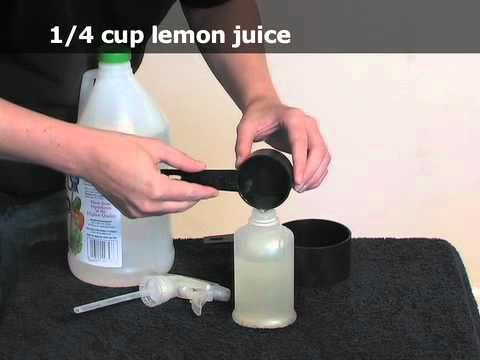 25 Best Ideas About Remove Mold Stains On Pinterest Cleaning Mold Diy Mould Removal And