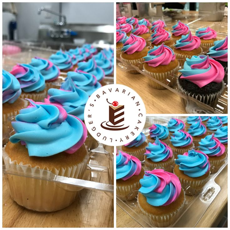 Pink or blue?  Blue or pink?  #genderrevealcupcakes #takeaguess A fun take on gender reveal...cupcakes instead of a cake.
