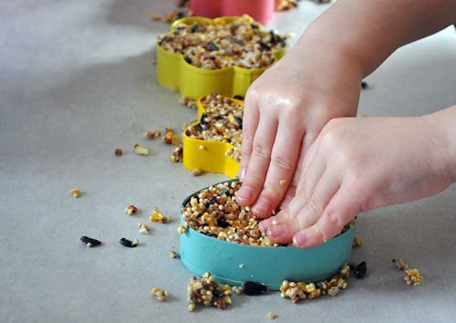 DIY Bird Seed Feeders - sub peanut butter for gelatin/honey
