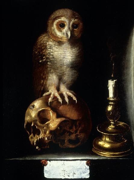 Vanité à la Chouette - Anonyme. début XVIIème.