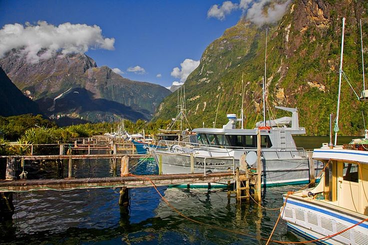 Milford Sound, Fishing fleet, see more, learn more, at New Zealand Journeys app for iPad www.gopix.co.nz