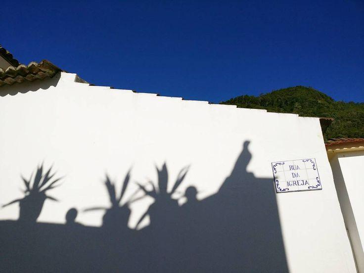 November in Açores spoiled me. I miss it already a lot!  . #natureknowsbest#açores #instanature #azores #portugal #atlantic #instatravel #shadows #happycactus #november #details #alpakamybags #endoftheworld