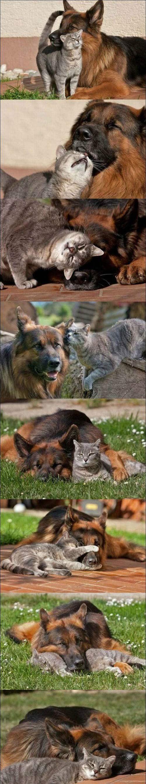 best einfach freunde images on pinterest best friends cutest