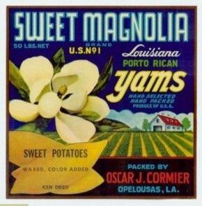 sweet tater vintage jpg 1200x900