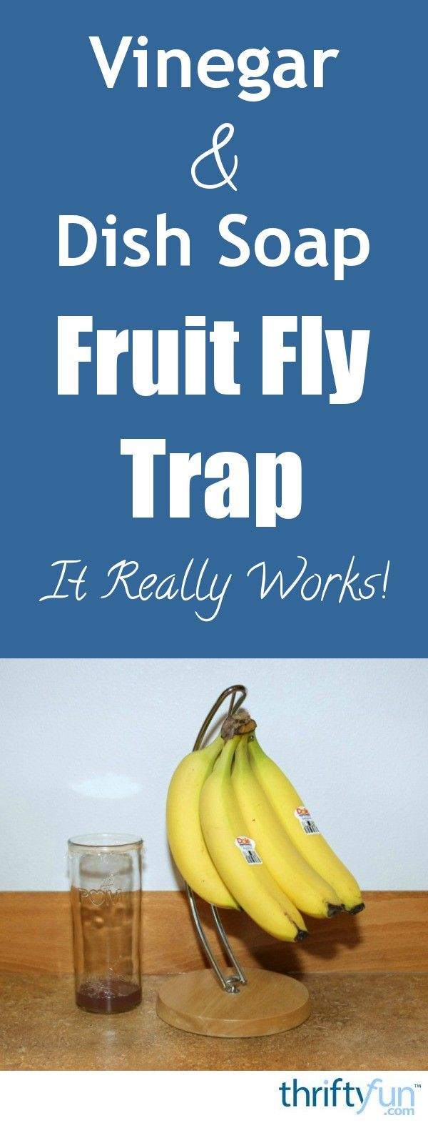 This is a guide about vinegar and dish soap fruit fly trap. A simple effective fruit fly trap can be made with apple cider vinegar and a few drops of dish soap.
