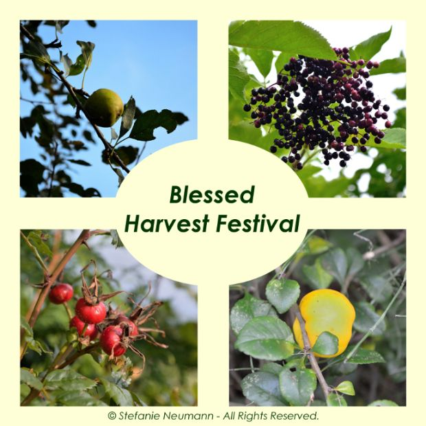 BLESSED HARVEST FESTIVAL 2016!: Today is the annual Harvest Festival in Germany. Nearly fallen into oblivion for many city people it still is celebrated in the rural, mainly Christian parishes. Even though I am not a Christian I am finding it a beautiful tradition to say Thanks for all that Mother Earth and life per se have gifted us. | #KokopelliBeeFree #KBFPhotography #AnnualHarvestFestival #Autumn