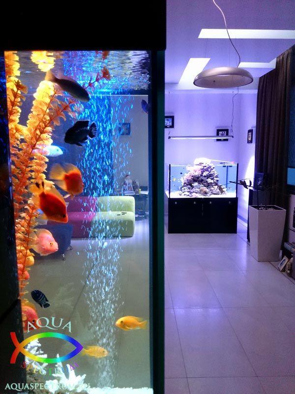 Морской и пресноводный аквариум в частном доме