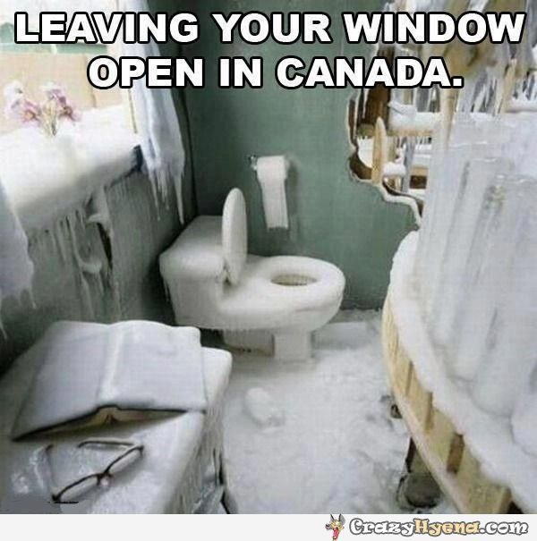 I have never seen snow or ice, I live in Oz. So, this is an interesting photo for me.