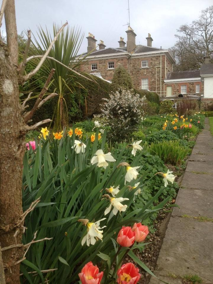 Our #spring #garden is in full #bloom and well worth a visit.. It looks even better with a spring cocktail in hand or while enjoying a delicious afternoon tea !