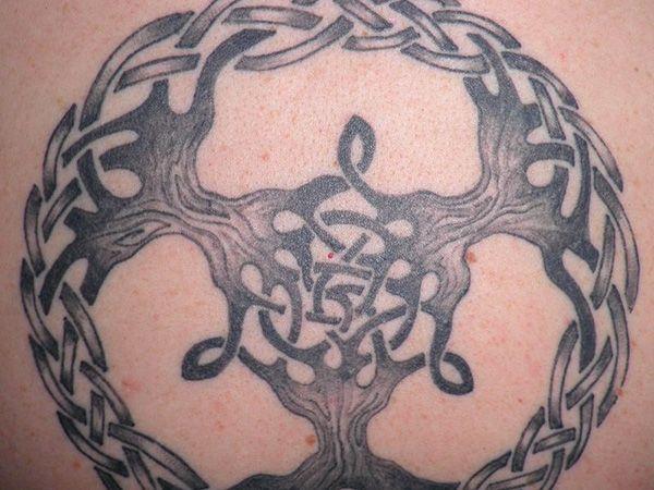 25 Terrific Celtic Tree of Life Tattoo Ideas - SloDive
