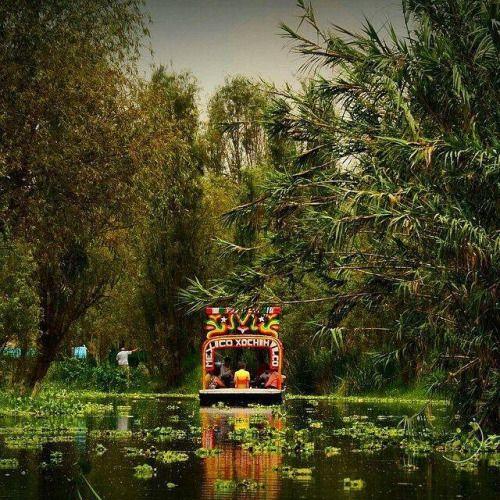 15. Iremos a Xochimilco para montar en los barcos. Será bonito y divertido. Iremos a cenar después de visitar Xochimilco.