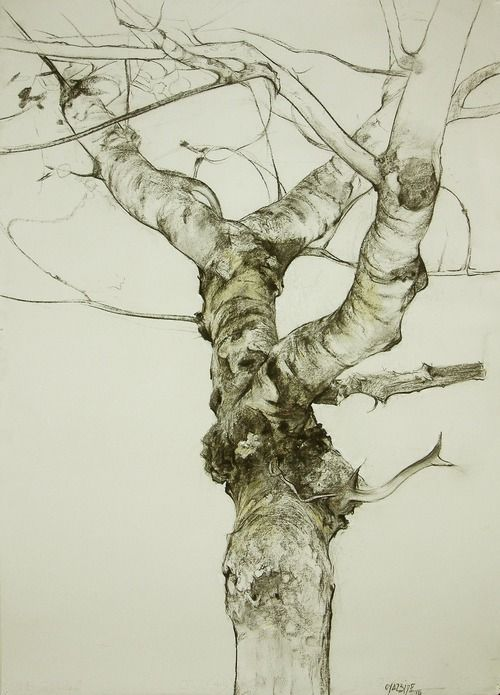 iamjapanese:  Miguel Ángel Oyarbide(Spanish) Brunches  2010-2011 Charcoal and graphite pencil Thanks todarksilenceinsuburbia