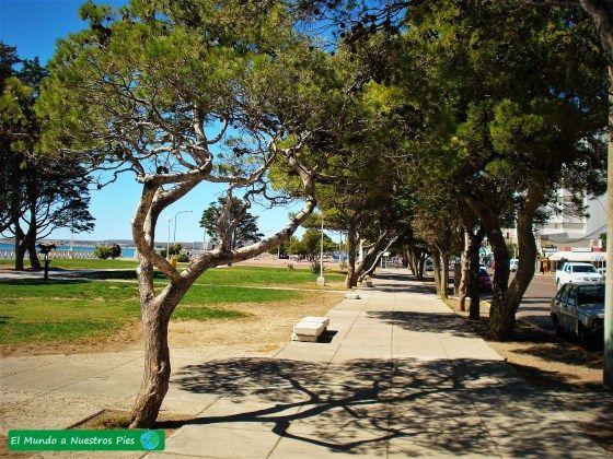 Puerto Madryn  #PuertoMadryn #PuntaTombo #PeninsulaValdes #DiqueFlorentinoAmeghino