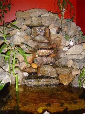 ... .com/forums/showthread.php?314678-140-Gallon-Indoor-Turtle-Pond-Build