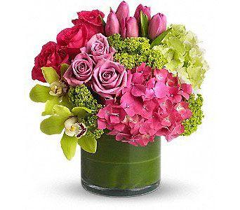 New Sensation In Houston Tx River Oaks Flower House Inc