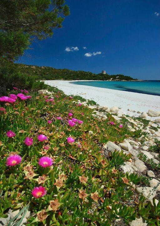 Cala Pira #Sardinia #Sardegna