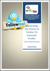 Making money on Twitter - SA Tech Review