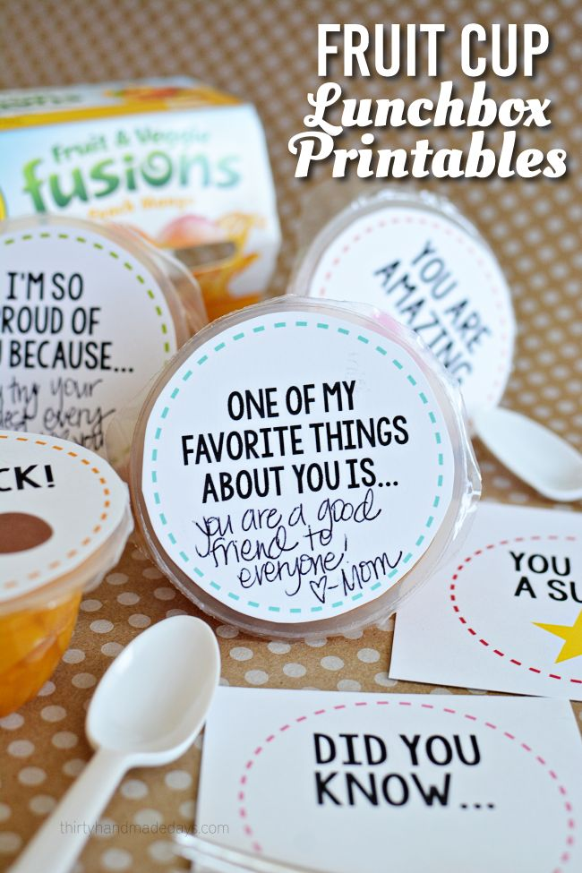 Fruit Cup Lunchbox Printables - perfect for back to school www.thirtyhandmadedays.com
