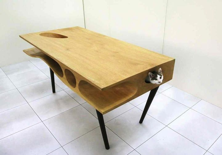 Shared Table Where People Can Work and Cats Can Wander - My Modern Metropolis