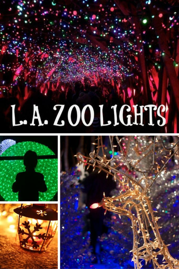 """LA Zoo Lights returns for its third spectacular year as it kicks off a """"ZooLAbration"""" of the Los Angeles Zoo's 50th Anniversary on Friday, November 18, 2016, and remains open for seven awe-inspiring weeks through Sunday, January 8, 2017. Get discount tic"""