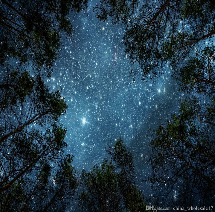 Bare My Child Taehyung X Reader 18 The Wolf Starry Night Sky Starry Sky Sky Aesthetic