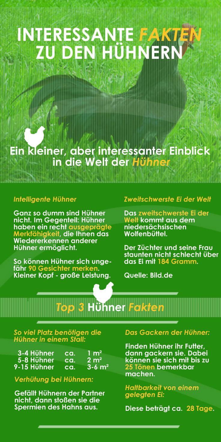 Hühnerstall kaufen ✅ Hühnerstall günstig ✅ Hühnerstall selber bauen ✅ Top Produkte ✅ Top Preise ✅ Top Marken ✅ Aktuell ✅ NEU ✅ Vergleich ✅