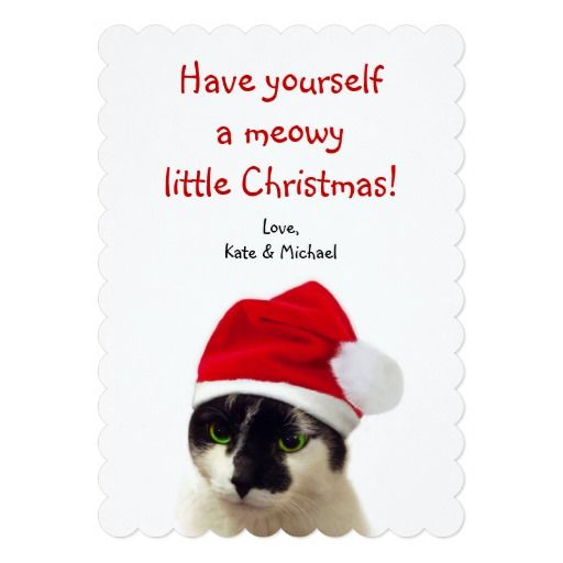 Lovely cute cat wearing Santa's hat, wishing you happy meowy Christmas, on this special custom paper card! #fomadesign