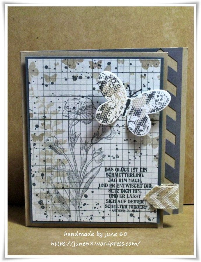 Schmetterlingsgruß ---- (1)
