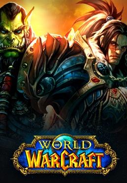 I play World of Warcraft (WoW)