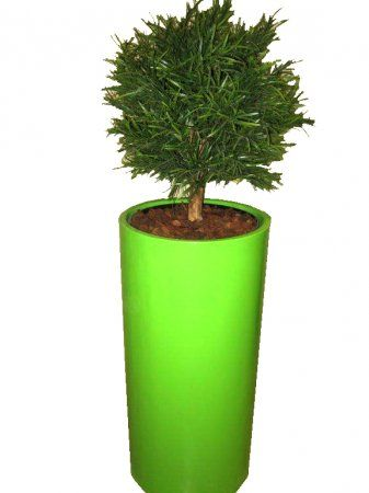 Floor standing silk plants