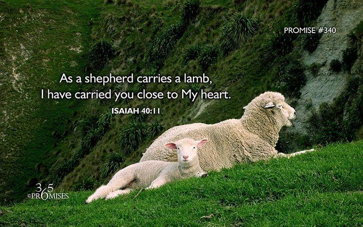 Whom Shall I Send? Send me Lord: Deuteronomy 26:16-19, Psalm 119:1 ...