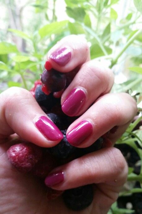 #shellac #Manicure #berries