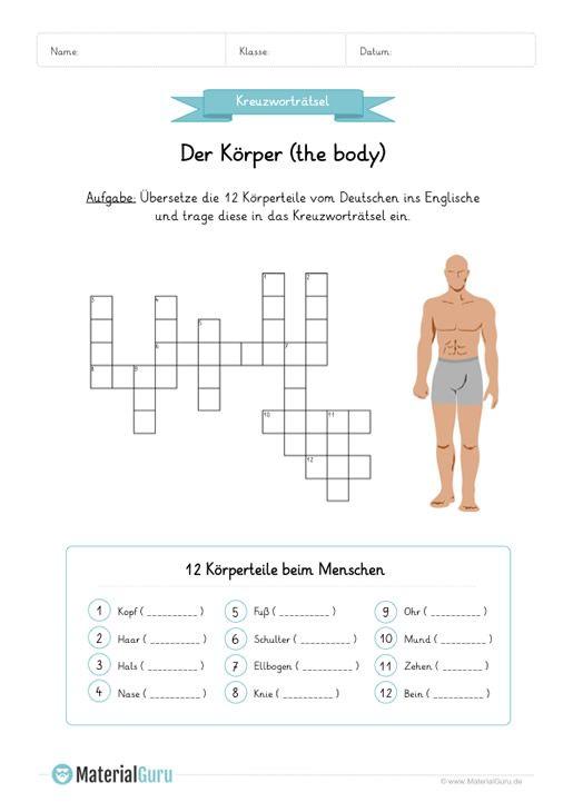 NEU: Ein kostenloses Englisch-Arbeitsblatt zum Thema Körper für die ...