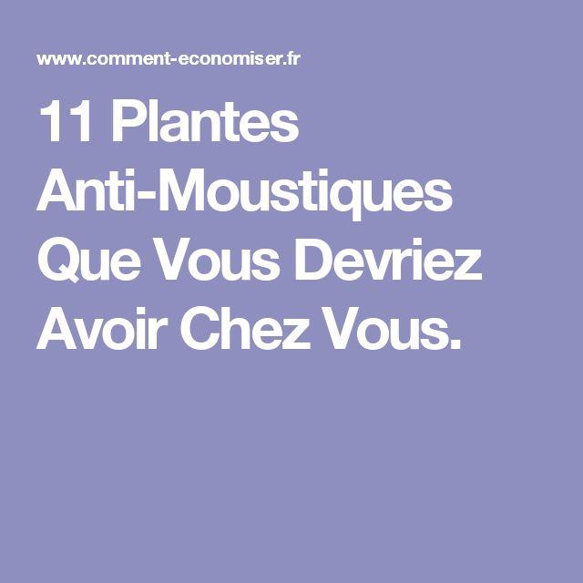 Les 25 meilleures id es concernant plantes anti moustiques - Plante anti moustique ...