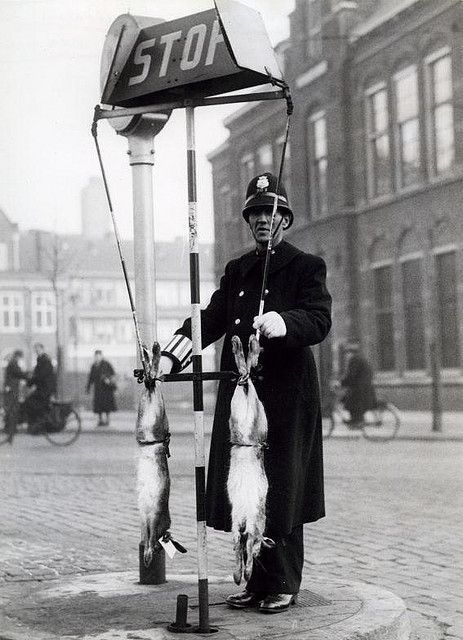 Traffic officer at Christmas -- Rijswijk Square, 's-Gravenhage, 1939. Traffic officer at STOP sign with with two rabbits. The Ford Service traffic officers who were regularly stationed at the busiest traffic points were given a Christmas rabbit at Christmas time.